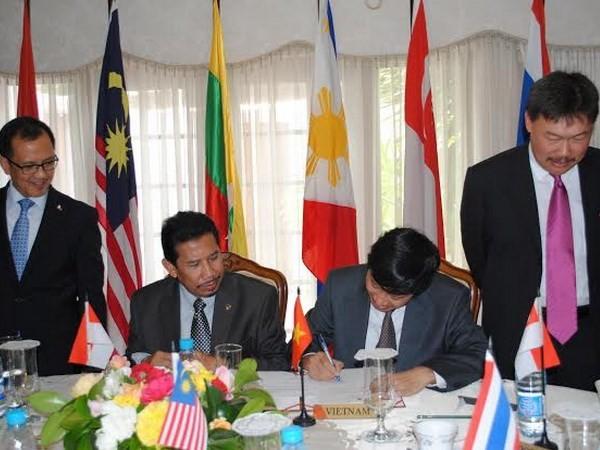 Duta Besar Vietnam memegang jabatan Ketua Komite ASEAN di Afrika Selatan - ảnh 1