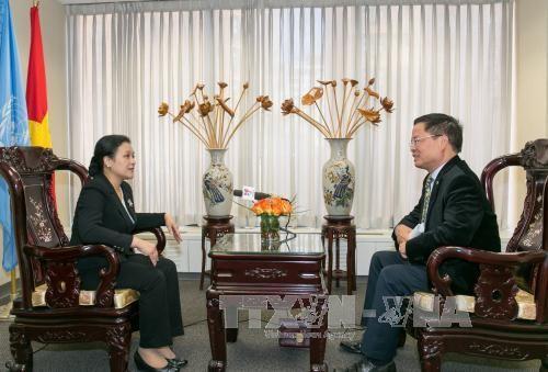 Vietnam berusaha mengembangkan peranan membela dan menjunjung tinggi semua prinsip fundamental Hukum Internasional dan Piagam PBB - ảnh 1