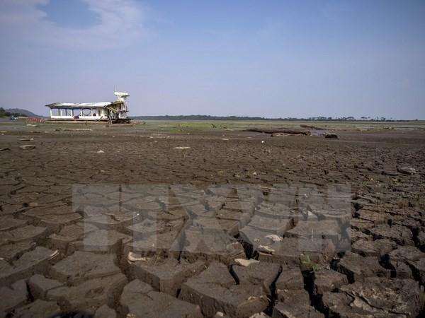 Perancis meletakkan banyak harapan pada Brasil dalam Konferensi COP 21 - ảnh 1