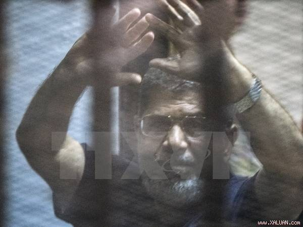 Mesir menyita dana-dana milik Mantan Presiden Morsi  - ảnh 1