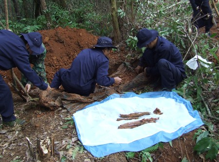Vietnam will bis 2015 rund 10.000 sterbliche Überreste von gefallenen Soldaten finden - ảnh 1