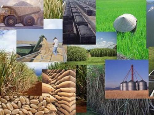 2014: Vietnams Wirtschaft wächst nachhaltig - ảnh 1