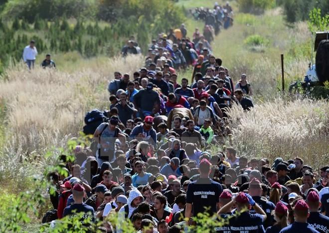 EU beschließt die Verteilung von 120.000 Flüchtlingen - ảnh 1