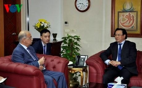 Der Leiter des Außenkomitees der KPV trifft den ägyptischen Premierminister - ảnh 1