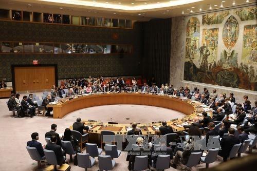 UN-Sicherheitsrat erwägt Resolutionsentwurf zu Jerusalem - ảnh 1