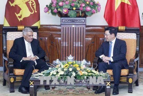 Vizepremierminister Pham Binh Minh trifft den sri-lankischen Premierminister  - ảnh 1