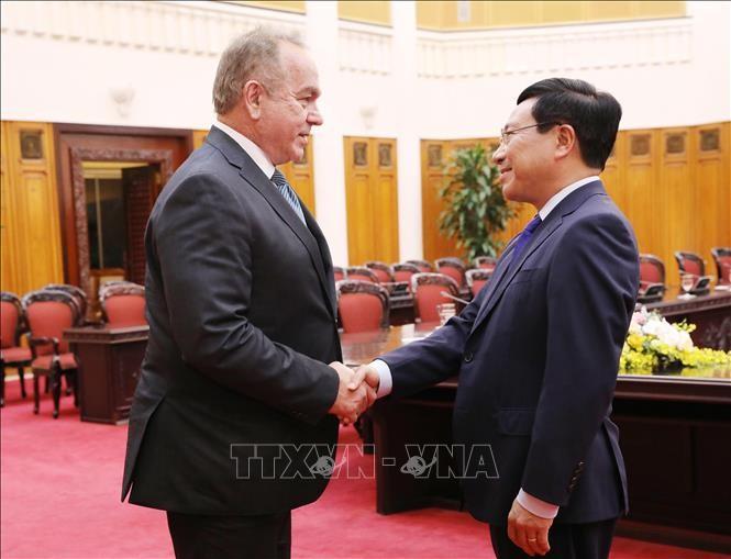Vizepremierminister und Außenminister Pham Binh Minh empfängt US-Unternehmensdelegation - ảnh 1