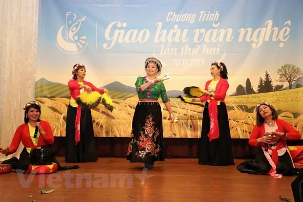 Programm zum Kunstaustausch der in Deutschland lebenden Vietnamesen - ảnh 1