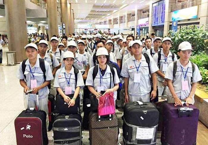 2019: 150.000 Vietnamesen arbeiten im Ausland - ảnh 1