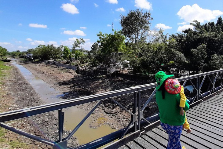 Dürre stört das Kap Ca Mau - ảnh 2