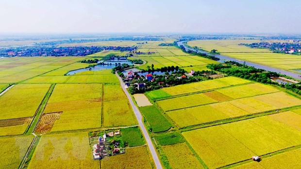 Für eine sich nachhaltig entwickelnde Landwirtschaft - ảnh 1