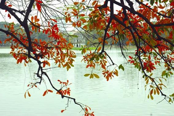 Hanoi in der Poesie - ảnh 1