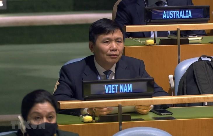 Bekräftigung Vietnams: Alle Streitigkeiten sollen gemäß dem Völkerrecht gelöst werden - ảnh 1