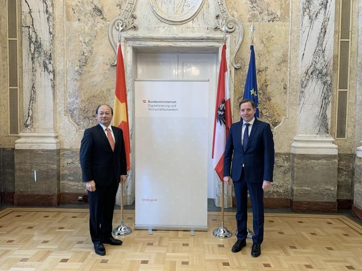 Vietnam und Österreich verstärken Zusammenarbeit in Wirtschaft und Handel - ảnh 1