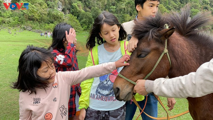 Steppe Dong Lam – ideales Picknickziel - ảnh 13