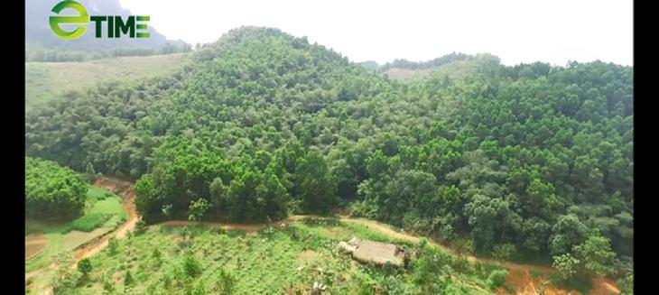 Farm Hon Mu – Harmonie zwischen Menschen und Natur - ảnh 1