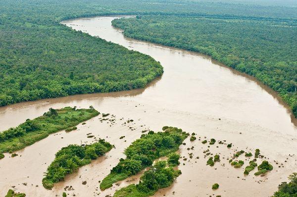 Webinar über Klimawandel und Umweltnachhaltigkeit in der erweiterten Mekong-Subregion - ảnh 1