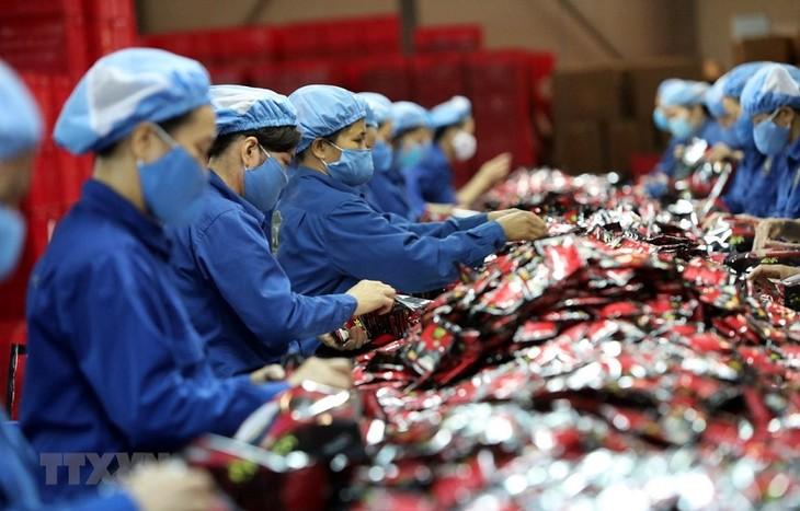 Singapurs Artikel: EU-Vietnam-Freihandelsabkommen trägt zur Minderung der Wirkungen der Wirtschaftsrezession - ảnh 1