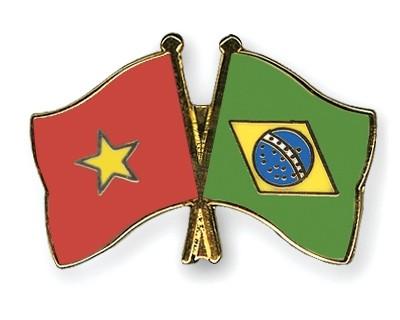 越南与巴西具有农业与旅游发展合作潜力 - ảnh 1