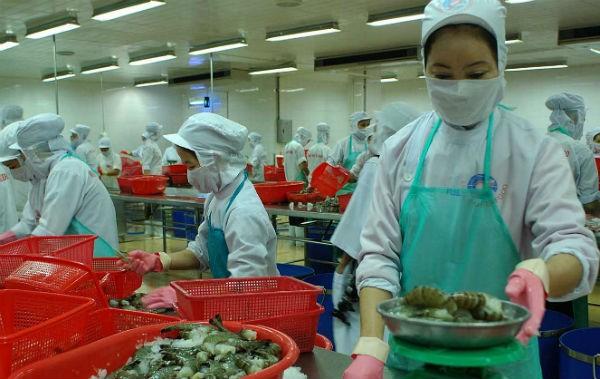Veröffentlichung des Berichtes zu fünf Jahren WTO-Beitritt - ảnh 1