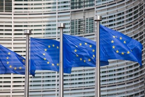 EU bringt Handelsstreit mit Russland an WTO - ảnh 1