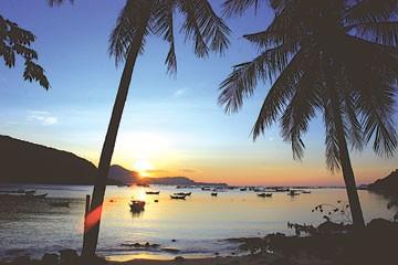 Die einsame Bucht Xuan Dai - ảnh 1