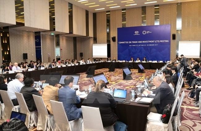 SOM 3 richtet sich nach einer inklusiv und nachhaltig entwickelnden APEC-Gemeinschaft - ảnh 1