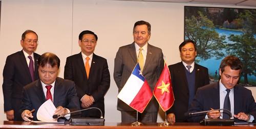 Vizepremierminister Vuong Dinh Hue schließt seinen Chile-Besuch ab - ảnh 1