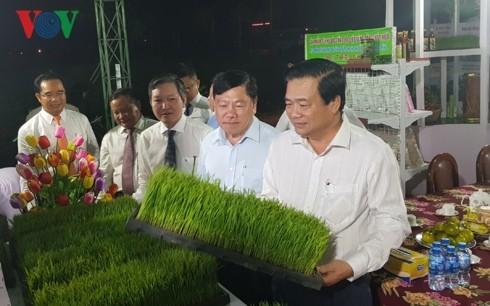 Eröffnung des Reis-Festivals und Veröffentlichung der vietnamesischen Reis-Marke - ảnh 1