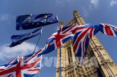 Großbritannien sucht nach Handelsvereinbarungen nach dem Brexit - ảnh 1