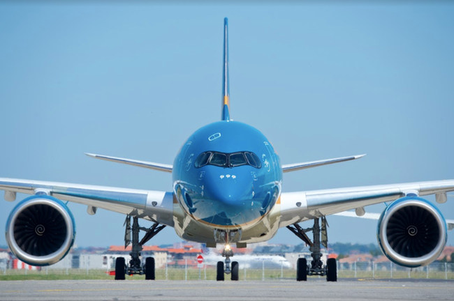 Rückholflüge aus den USA und Frankreich durchgeführt - ảnh 1