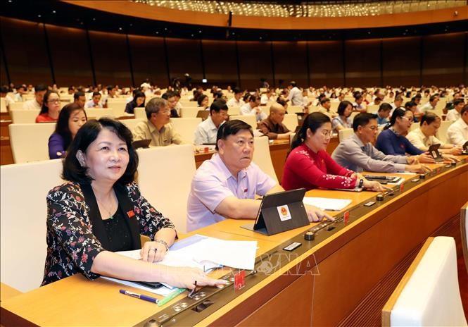 Parlament ist einverstanden, Steuerbefreiung für Ackerland bis Ende 2025 zu verlängern - ảnh 1