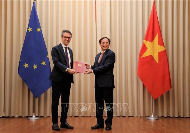 Vietnam überreicht der EU Noten über Ratifizierung von EVFTA und EVIPA durch das Parlament - ảnh 1