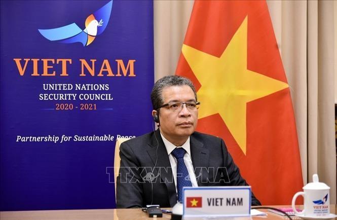 Vietnam ist bereit, zur Lösung des Israelisch-Palästinensischen Konflikts beizutragen - ảnh 1