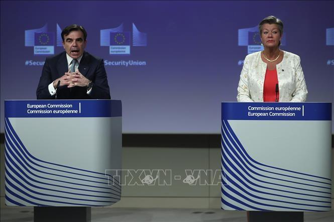 EU veröffentlicht Sicherheitsstrategie für den Zeitraum 2020-2025 - ảnh 1