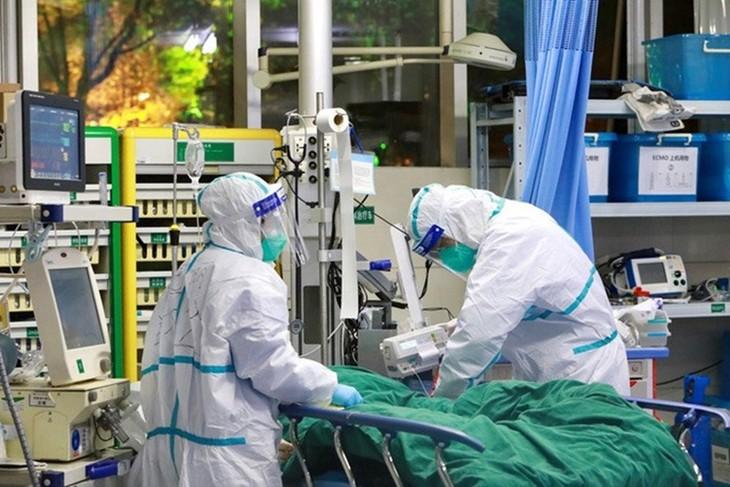 Weitere sieben Covid-19-Neuinfizierte in Da Nang - ảnh 1