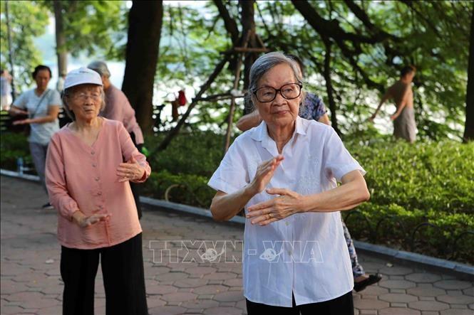 Tag für vietnamesische Senioren: die Schönheit der Alten - ảnh 6