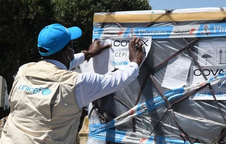 WTO will die Impfstoff-Versorgung ärmerer Länder beschleunigen - ảnh 1
