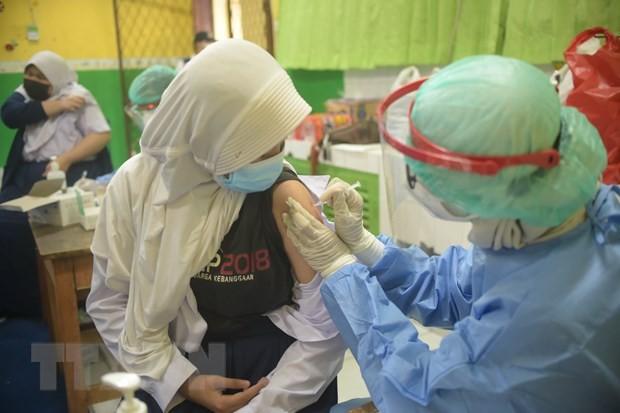 Weltgrößte Gesundheits- und Finanzorganisationen fordern Priorität für arme Länder bei Impfstoff-Lieferung auf - ảnh 1