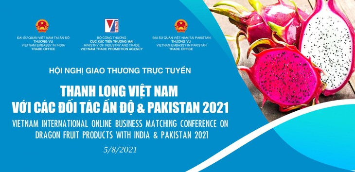 Absatzförderung vietnamesischer Drachenfrucht in Indien und Pakistan - ảnh 1