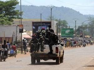 Republik Afrika Tengah  membentuk pemerintah sementara - ảnh 1
