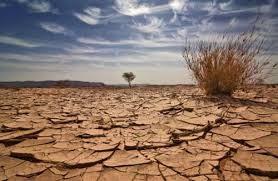 Merevisi Kerangka Program Bantuan dalam menghadapi perubahan iklim - ảnh 1