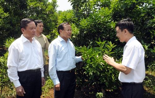 Kota Hanoi dan provinsi Hoa Binh memperkuat kerjasama dan perkembangan - ảnh 1