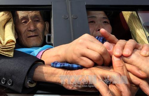 Dua bagian negeri Korea melakukan perundingan tentang progam reuni keluarga yang terpisah - ảnh 1