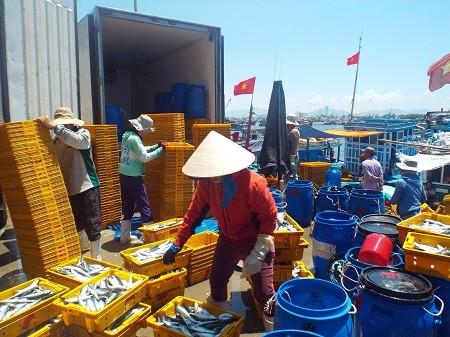 Para nelayan provinsi Khanh Hoa menyongsong Hari Raya Tet di laut - ảnh 1