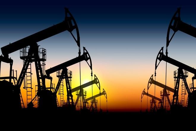 Iran mengimbau kepada negara-negara eksportir minyak tambang supaya memperkuat kerjasama - ảnh 1