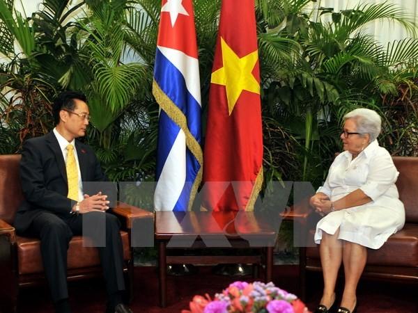Wapres Kuba percaya bahwa hubungan Kuba-Vietnam akan berkembang mantap - ảnh 1