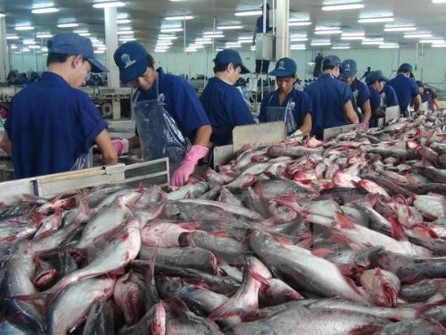 "Menggelarkan UU mengenai Perikanan dan mengatasi ""kartu kuning"" IUU di provinsi-provinsi pesisir daerah Nam Bo Tengah - ảnh 1"