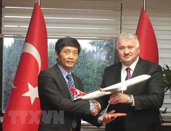 Menyerap investasi dari badan usaha Turki ke Viet Nam - ảnh 1