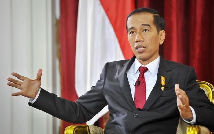 Visi perkembangan dari Presiden Indonesia dalam masa bakti ke-2 - ảnh 1